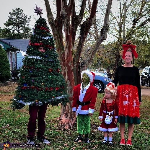 Grinch Christmas Theme Homemade Costume