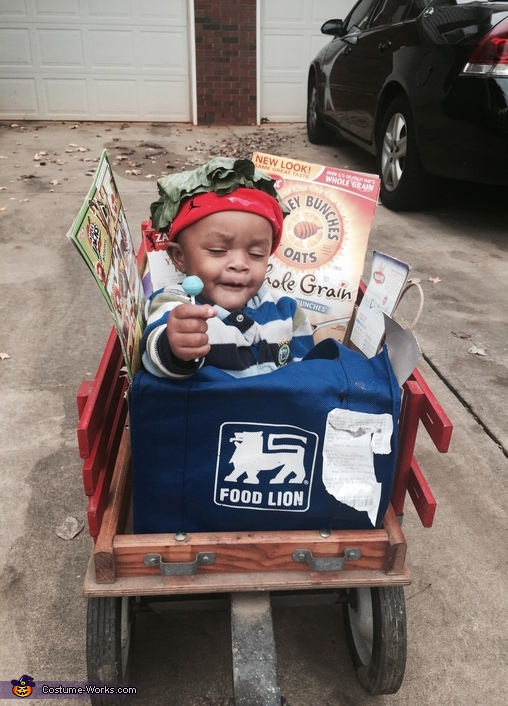 Grocery Bag Baby Costume