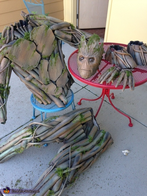 All painted and done, Homemade Groot Costume