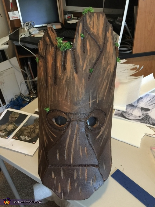Groot lives!, Groot and Rocket Costume
