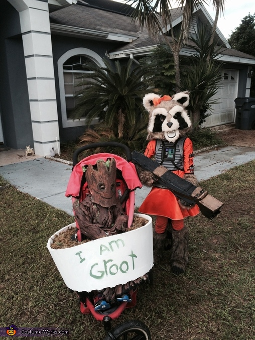 Baby Groot and rocket, Groot and Rocket Costume