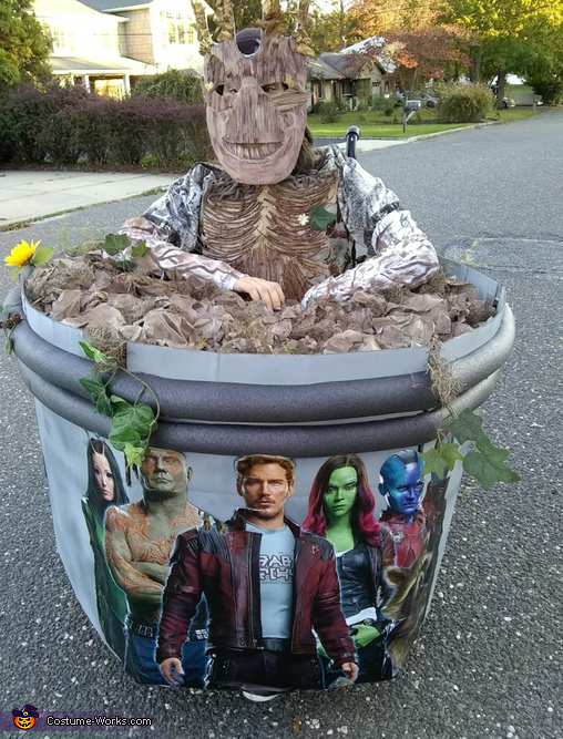 Groot rolls by Costume