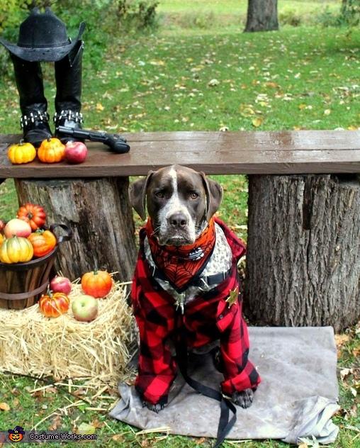 Grumpy Sheriff Costume