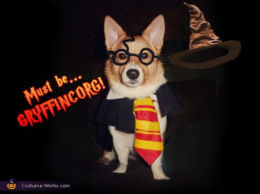 Jayden was sorted into Gryffincorg!, Gryffincorg! Costume