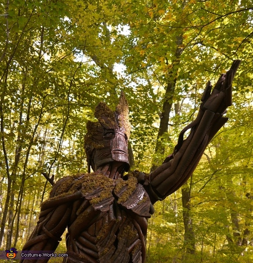Groot in the sunshine (he is a tree, after all), Guardians of the Galaxy Groot Costume