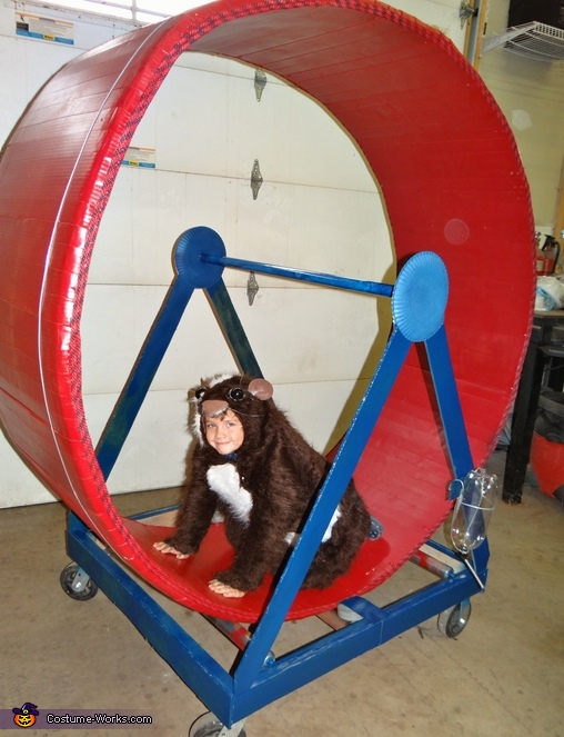 Completed wheel and Guinea Pig Costume,  Guinea Pig Costume