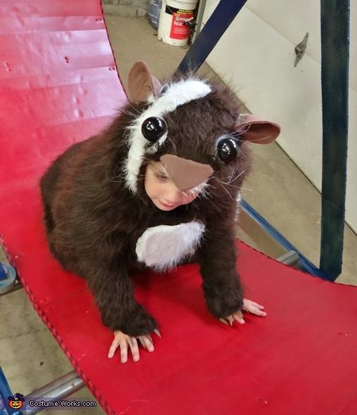 Guinea Pig - Homemade costumes for boys