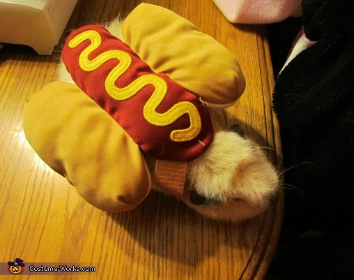 Top view of my guinea pig hot dog., Guinea Pig Hot Dog Costume