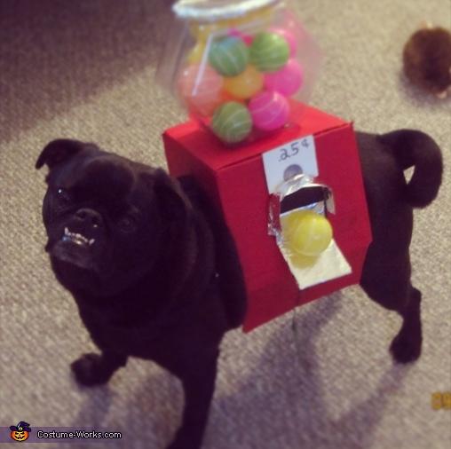Gumball Machine Dog Costume