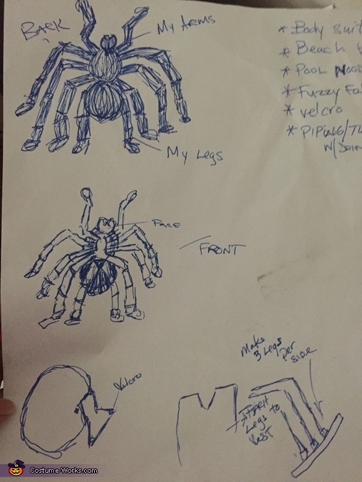 Here is the picture I drew up after my dream, Hairy Spider Costume