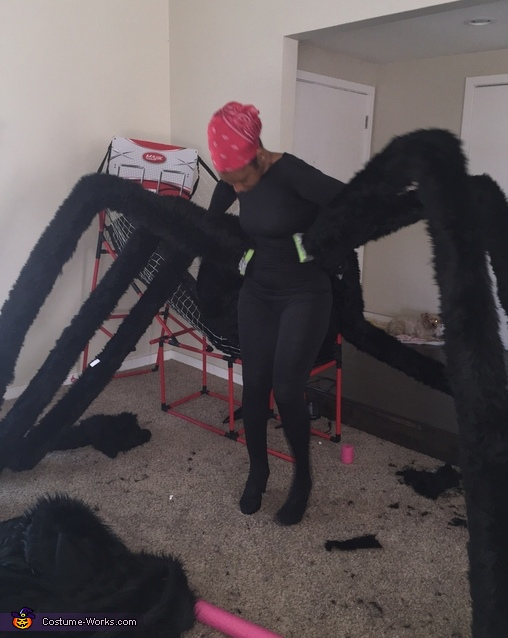 A trial run, Hairy Spider Costume