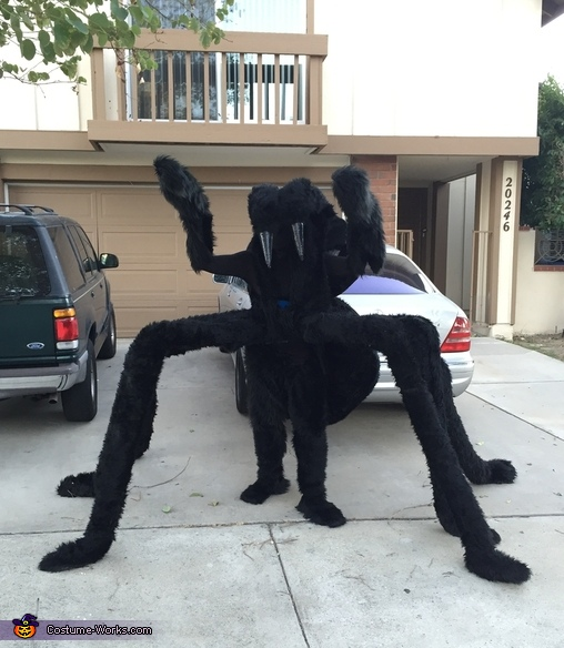 Hairy Spider Costume