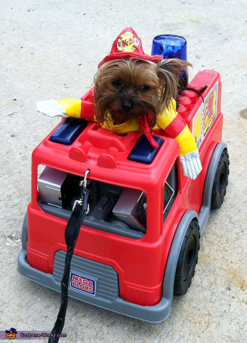 Hairy the Fireman Dog Costume