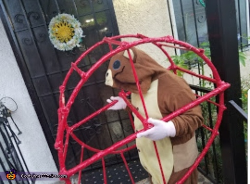 Hamster in his wheel Costume