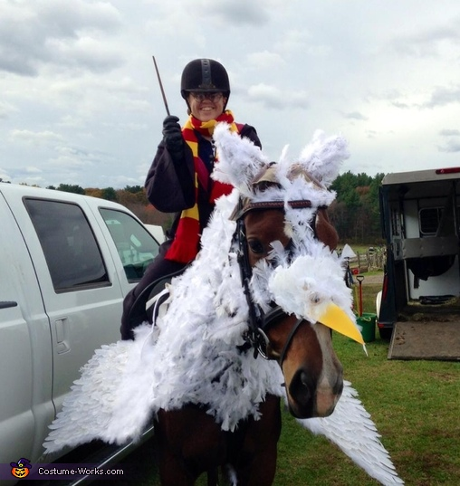 Harry Potter and Buckbeak the Hippogriff Costume