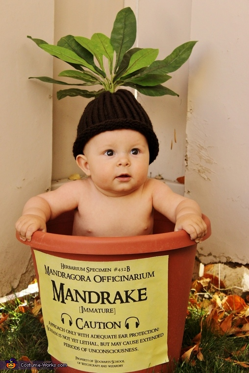 sc 1 st  Costume Works & Harry Potter Mandrake Baby Costume