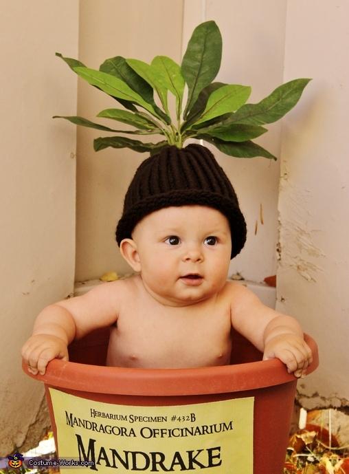 those cheeks , Harry Potter Mandrake Baby Costume
