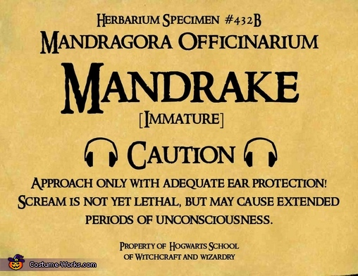 the label I used (readable here), Harry Potter Mandrake Baby Costume