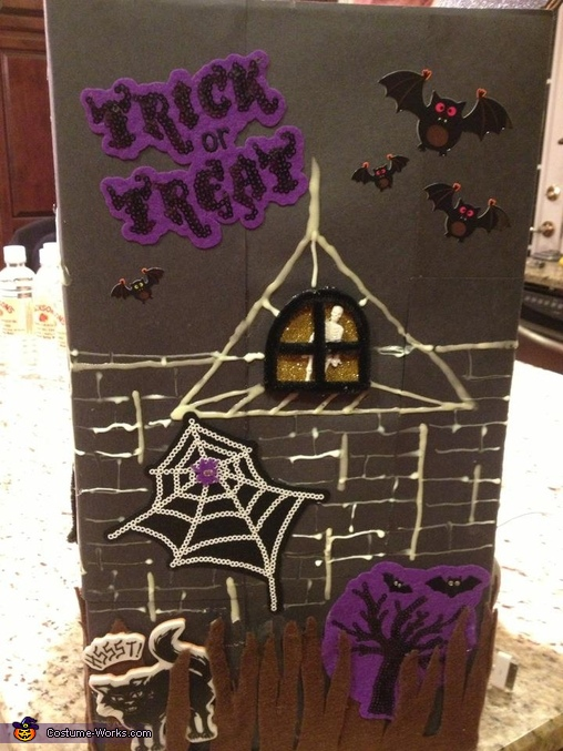 Sarah Haunted House SIDE PANEL, Haunted House Costume