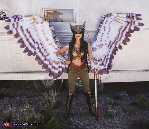 Hawkgirl Costume