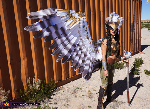Hawkgirl Wing Details, Hawkgirl Costume