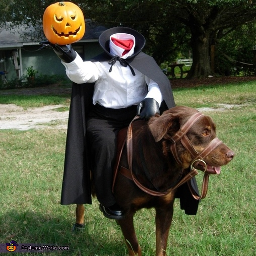 Headless Horseman's Horse Dog Costume
