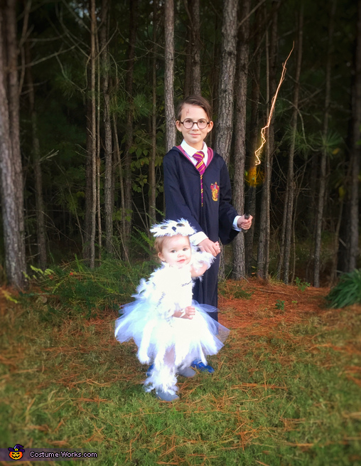 Harry Potter and Hedwig, Hedwig and Harry Potter Costume