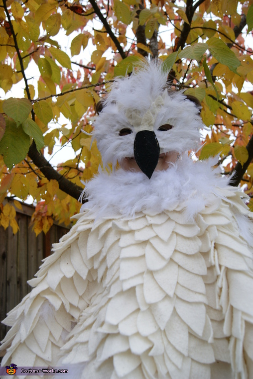 Happy Halloween! , Hedwig the Snowy Owl Costume