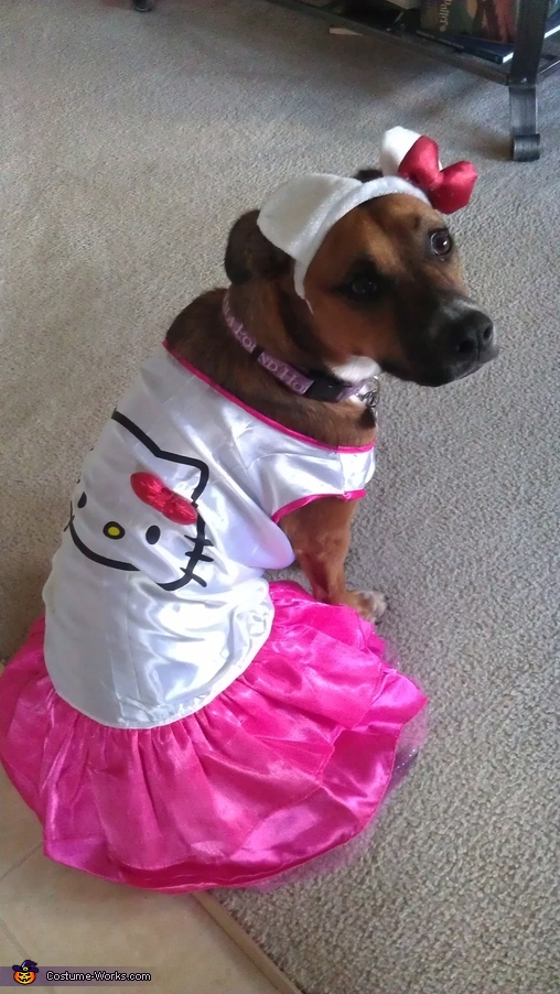 Hello Kitty Puppy Costume