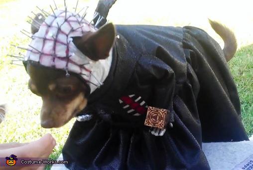 Pinhead Dog Costume
