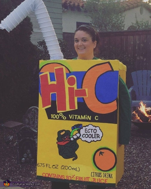Hi-C Ecto Cooler Juice Box Costume