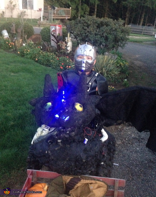 Hiccup and Toothless Costume