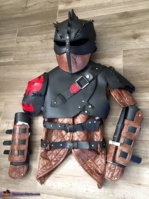 Hiccup the Dragon Trainer Homemade Costume