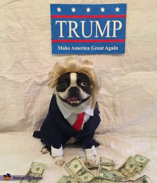 Trump, Hillary and Trump Costume