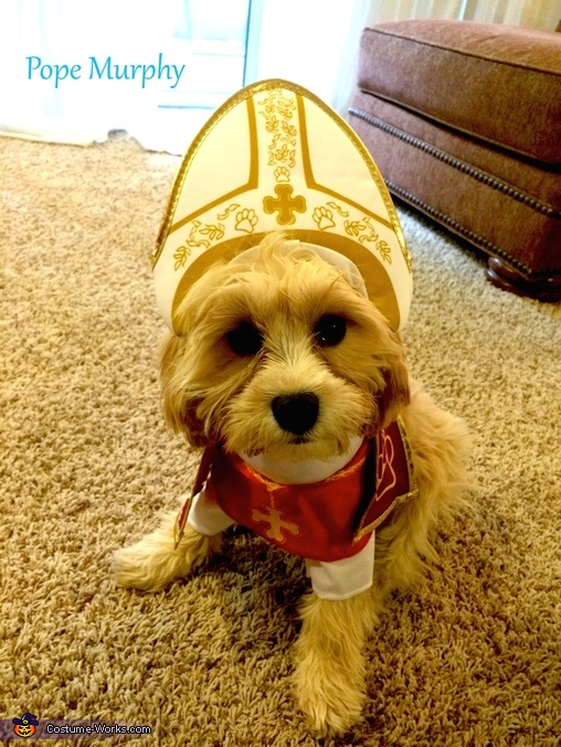His Holiness the Pope Dog Costume
