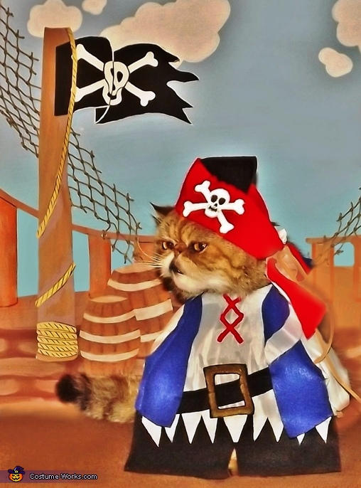 Hobbs the Pirate Costume