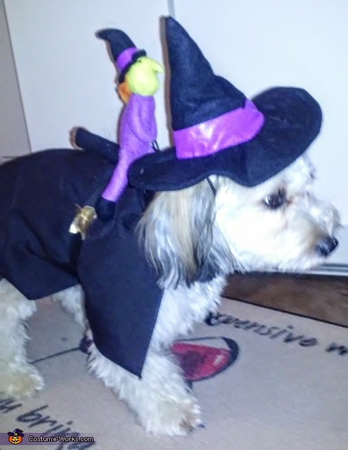 Holly the Witch with Mini Witch Costume