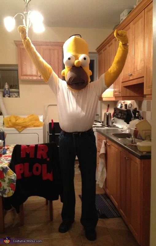 Woohoo!, Homer Simpson Costume