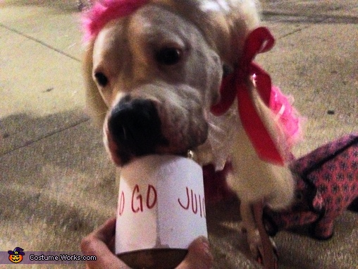 Go Go Juice aka Peanut Butter, Honey Boo Boo Costume