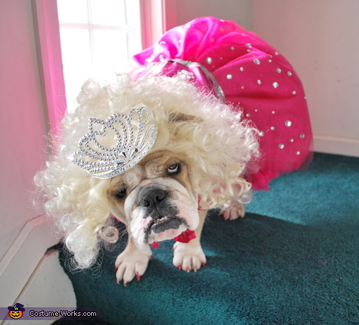 Are we done yet?, Honey Boo Boo Costume