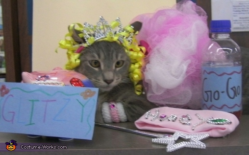 Honey Boo Boo - Homemade costumes for pets