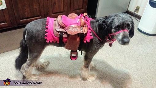 Horse Pony Dog Homemade Costume