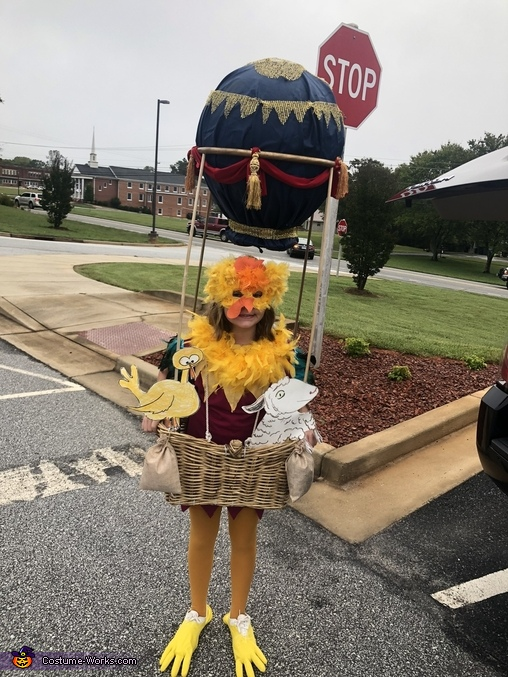 Hot Air Balloon Rooster Costume