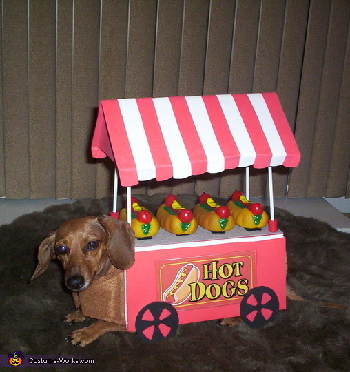 Hot Dog Cart Costume