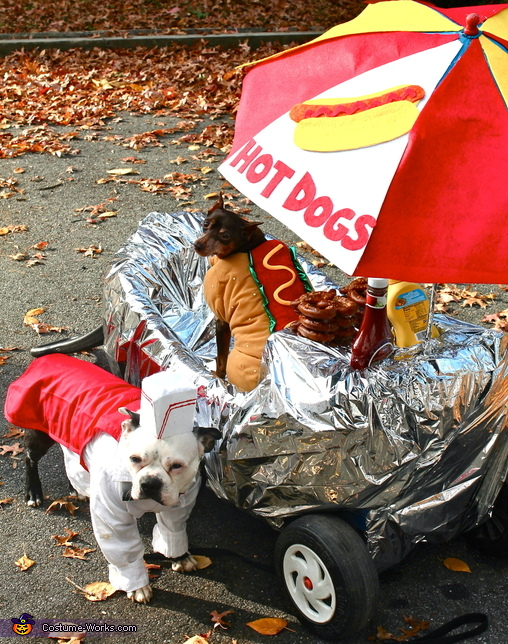 Hot Dogs for Sale Costume