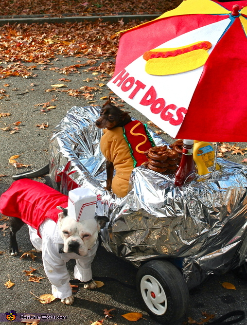 Get Yur Hot Dogs Here!, Hot Dogs for Sale Costume
