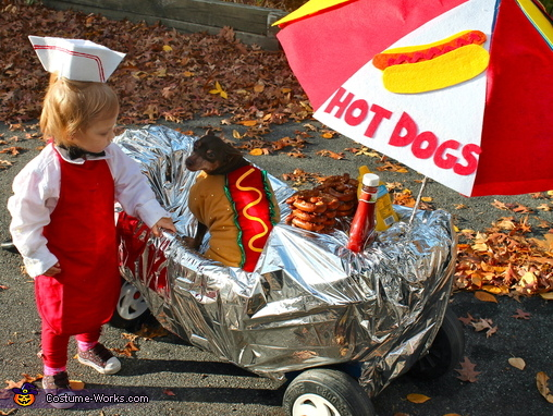 Hot Dogs for Sale Homemade Costume