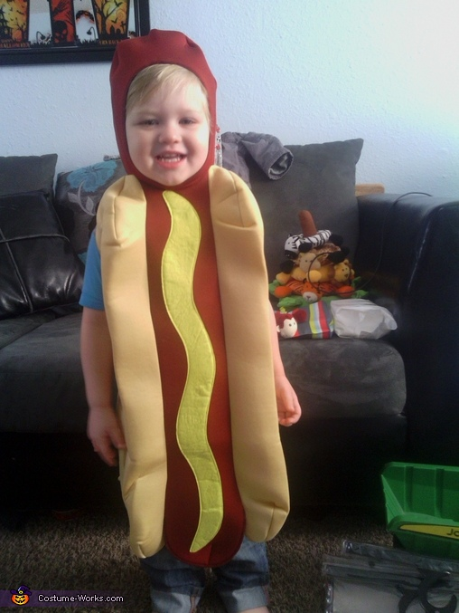 loves it!, Hotdog and Ketchup Packet Baby Costume