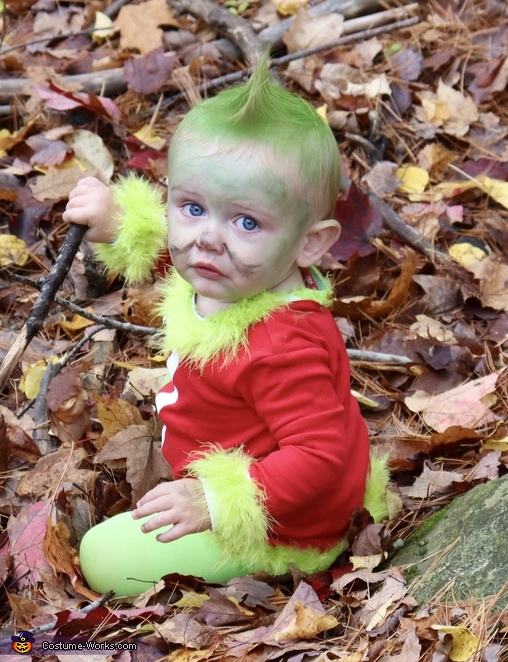 You're a mean one Mr. Grinch, How the Grinch Stole Christmas Costume