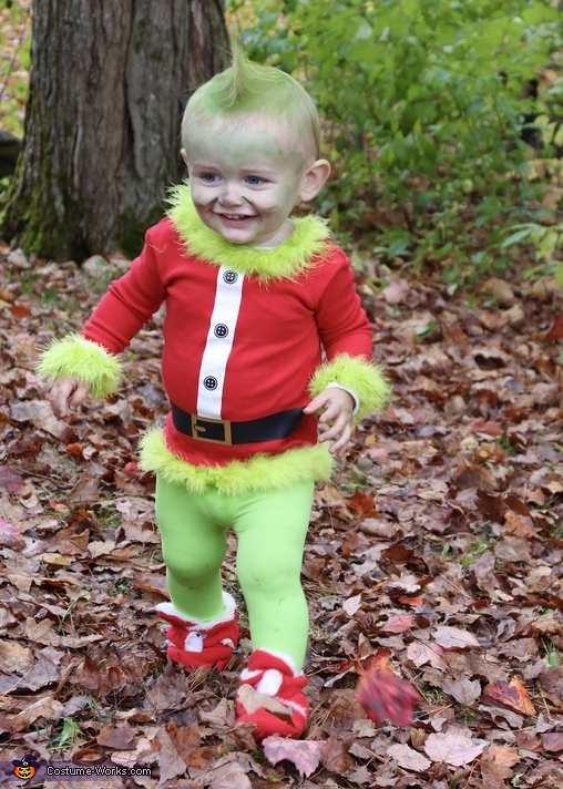 The Grinch, How the Grinch Stole Christmas Costume